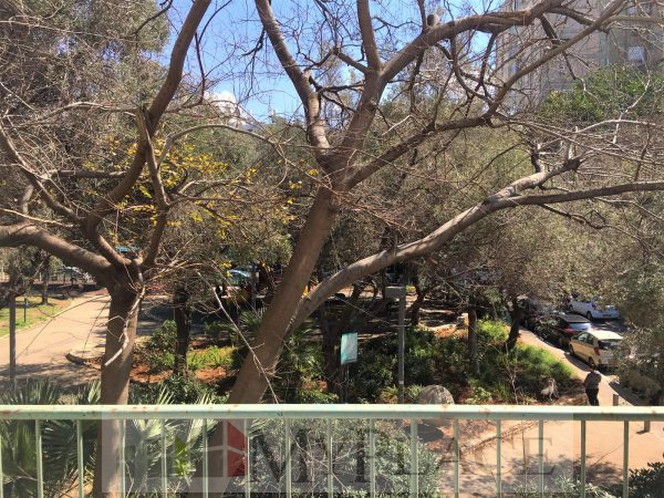ברחוב בארי המבוקש דירת 100 מר עם נוף לגינה 2
