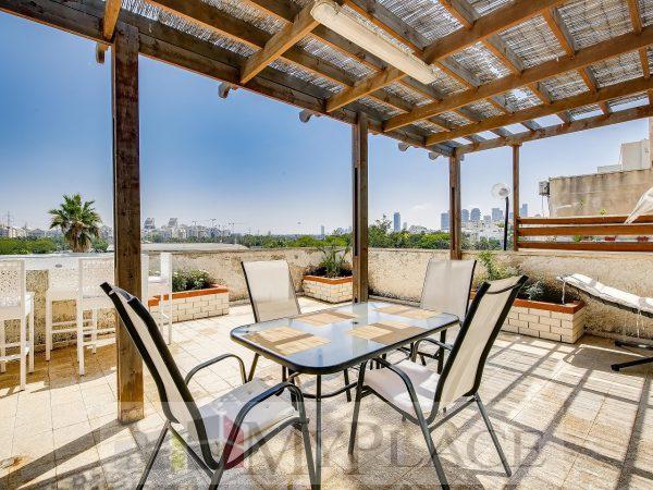 דירת גג עם נוף פתוח ברחוב אוסישקין 1