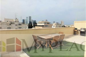 4 rooms and with a roof and terrace with elevator and parking near Rothschild