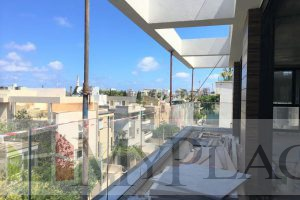 LUXURY MINI PENTHOUSE NEAR PARK YARKON