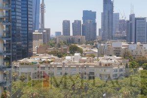 במגדלי דוד המלך בקומה גבוהה עם חניה